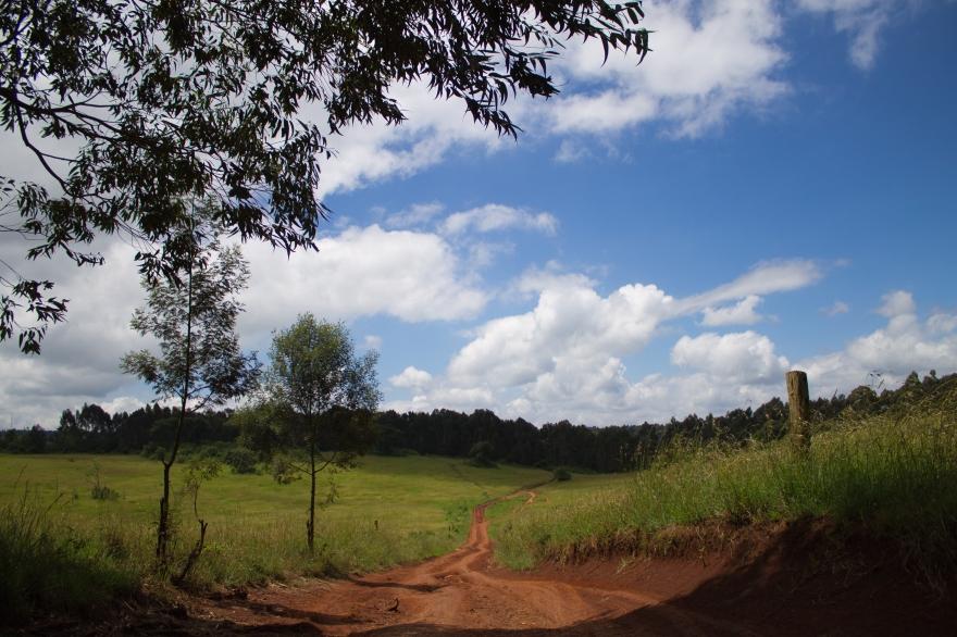 Field Path, Kenya