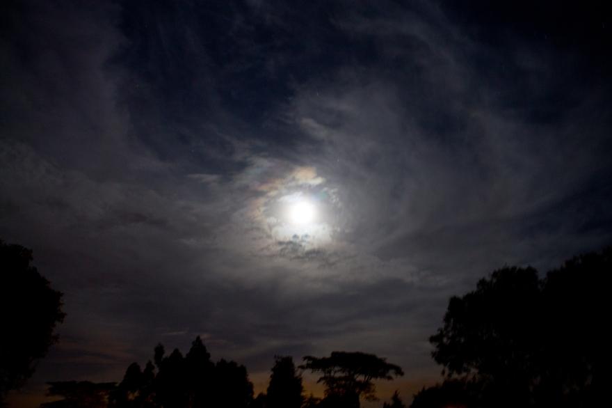 Moon Over Muguga, Kenya