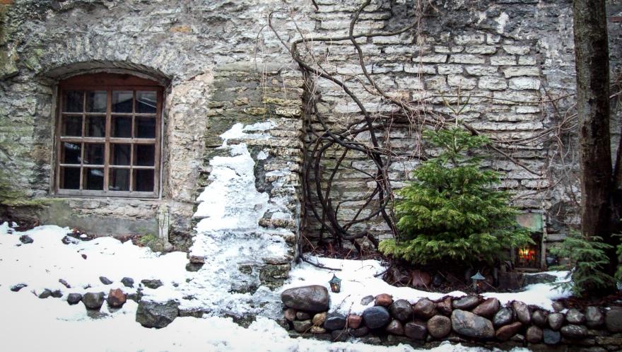 Magical Courtyard, Tallinn