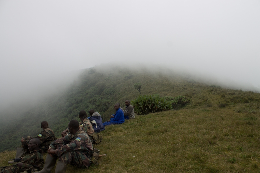 Guards, Mist, Bisoke Summit