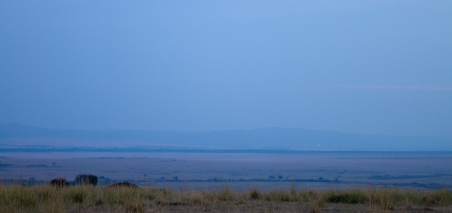 Early Morning Maasai Mara