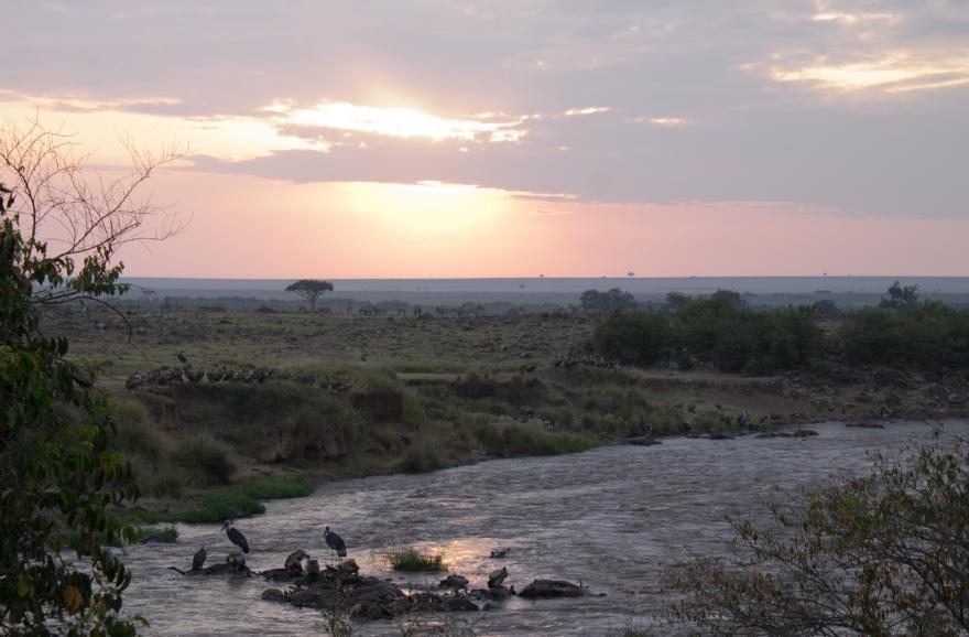 River of Death, Maasai Mara