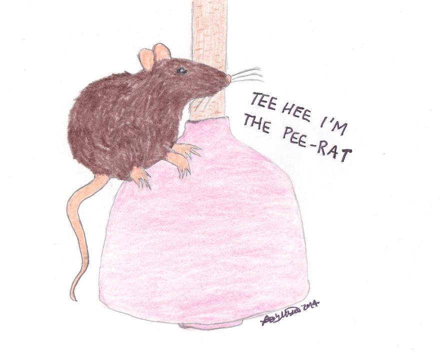 Pee-Rat
