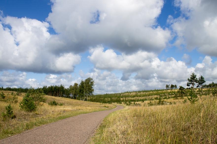 Curonian Spit Bike Path
