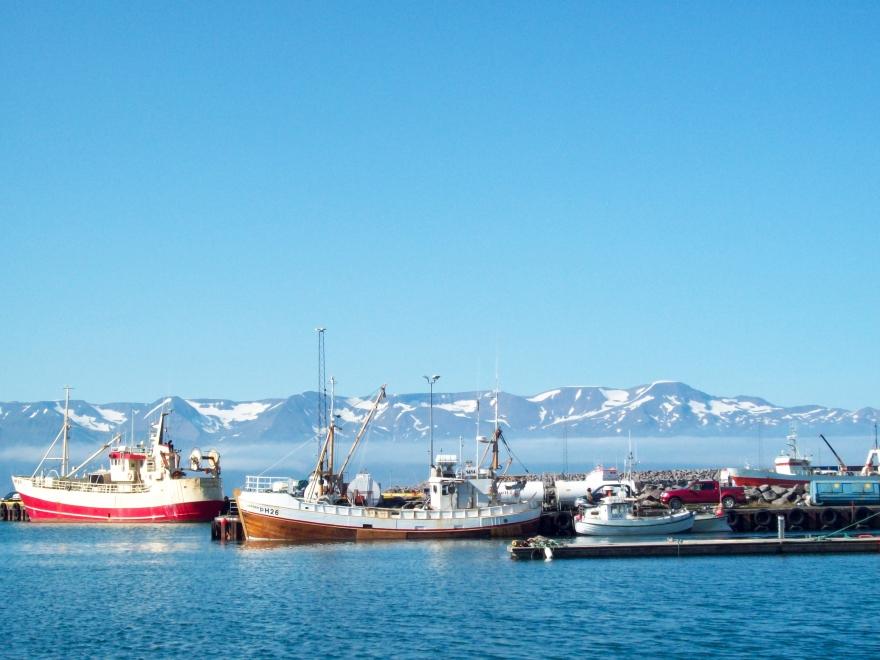Húsavík's Harbor