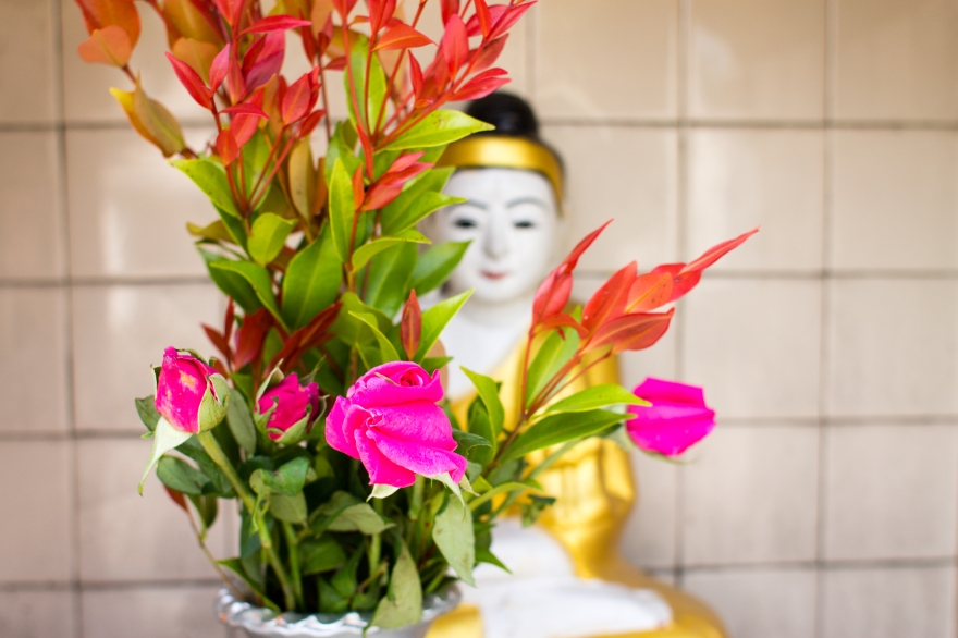Buddha with Roses