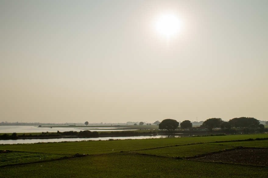 Fields by U Bein Bridge