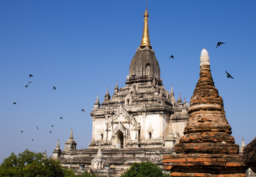 Birds and Temples, Bagan