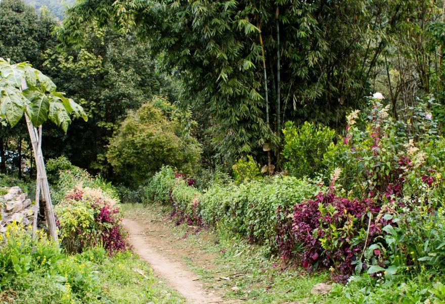 Trekking out of Pindaya
