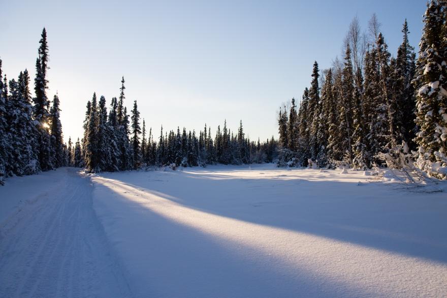 Snow Light Shadows