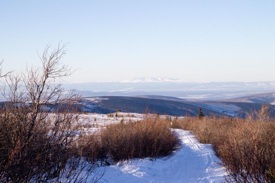 Alaska View