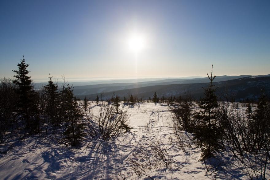 Alaska View 2