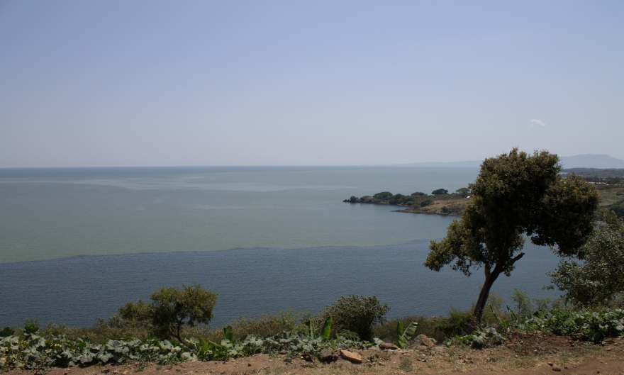 Lake Victoria Current