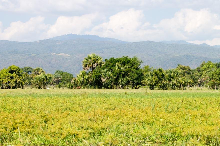Oaxaca Hills from Laguna de Manialtepec