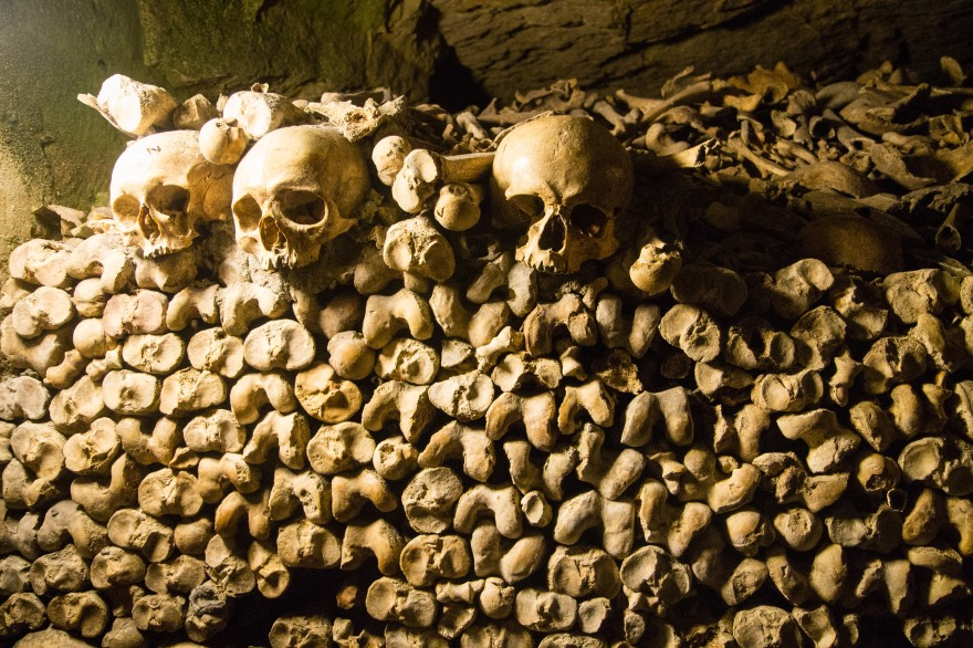 Paris Catacombs I