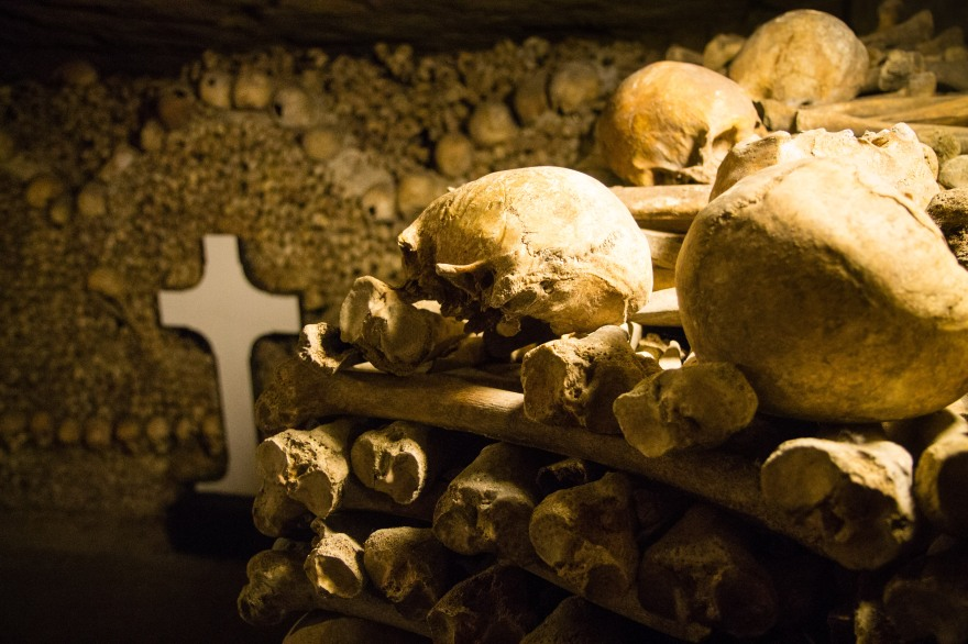 Paris Catacombs II