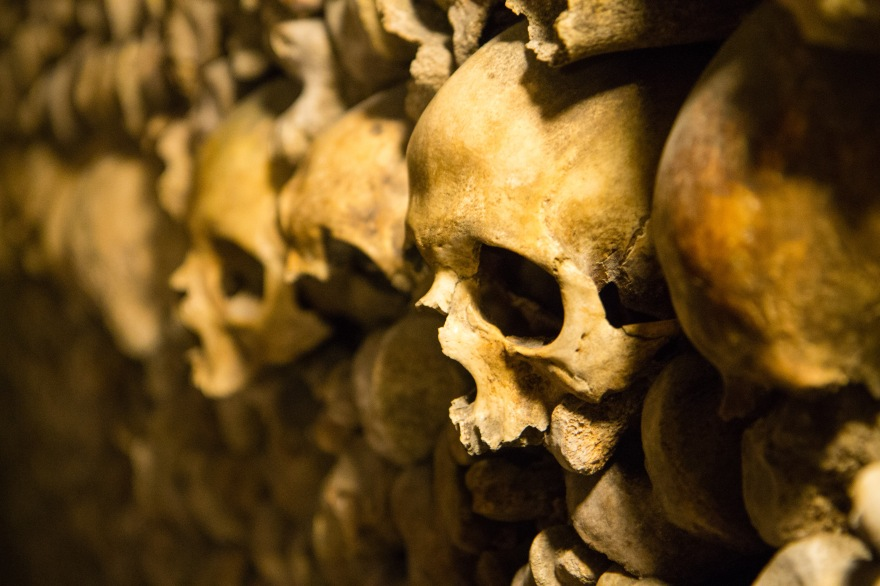 Paris Catacombs III