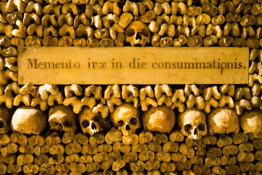 Paris Catacombs IV